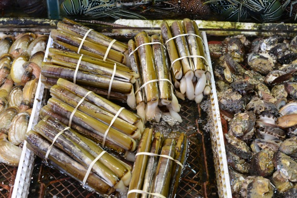 Razor clams from Chinese waters.