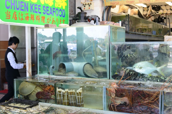 Hungry for eel? Get to Sai Kung.