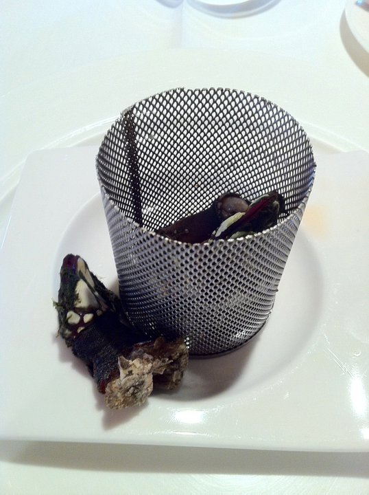 Percebes, before the tasting.