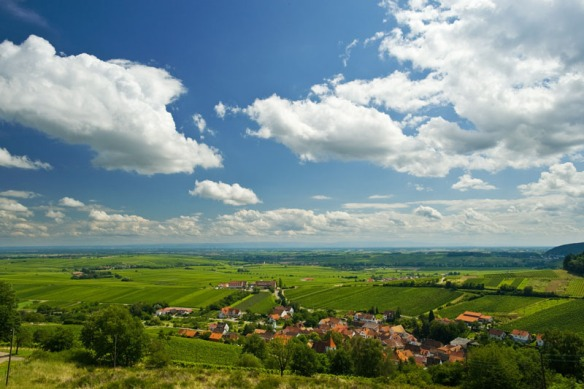 God's country, and home to some outstanding Rieslings. (Photo courtesy Germany.travel.com)